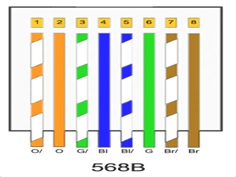 cat6 wiring diagram 568a kanvamath org
