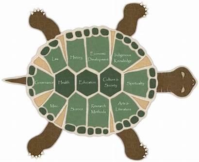 Indigenous Studies Turtle Iportal Native Nations American