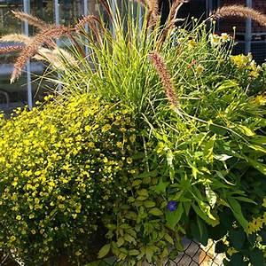 Balkon Gestaltungsideen Pflanzen : ideen f r ihre balkon gestaltung in gelb ~ Lizthompson.info Haus und Dekorationen