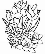 Rose Bud Coloring Pages Flower Getdrawings Roses sketch template