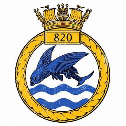 Squadron Air Naval Fleet Arm Insignia 820