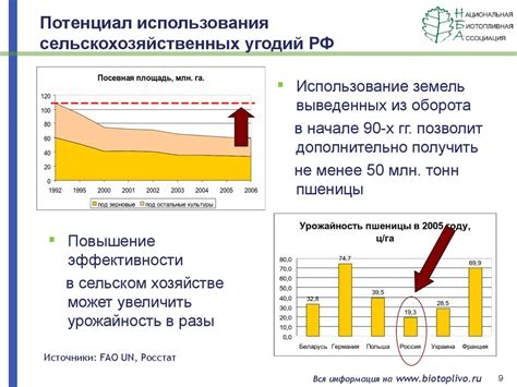Внедрение биомассы для энергетических целей . Топливо в брикетах