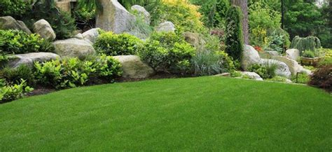 spring cleanup landscape landscaping near services cleanups residential chris james jersey final