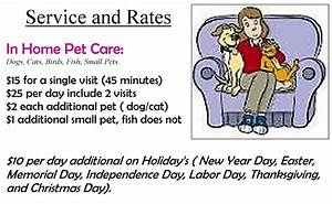Going rate for house sitting with pets house plan 2017 for Professional dog walker rates