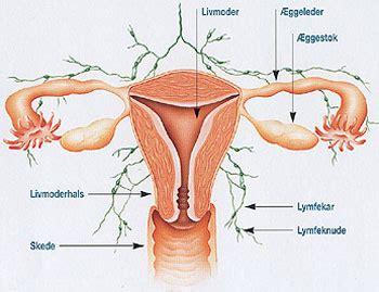 Endometrios gravid symtom