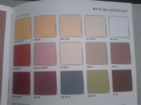 revger palette couleur peinture pour mur id 233 e inspirante pour la conception de la maison