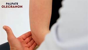 Elbow Palpation