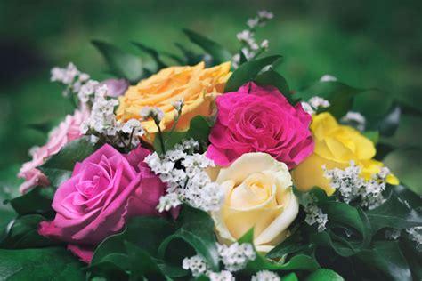 blumenstrauss rosen kostenlose bilder  titania foto