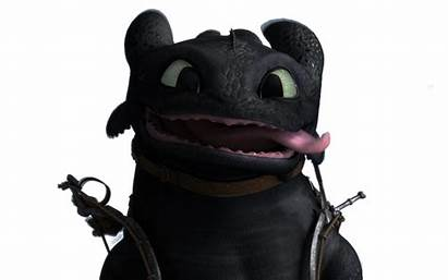 Toothless Funny Fury Night Smurfette Dragon Train