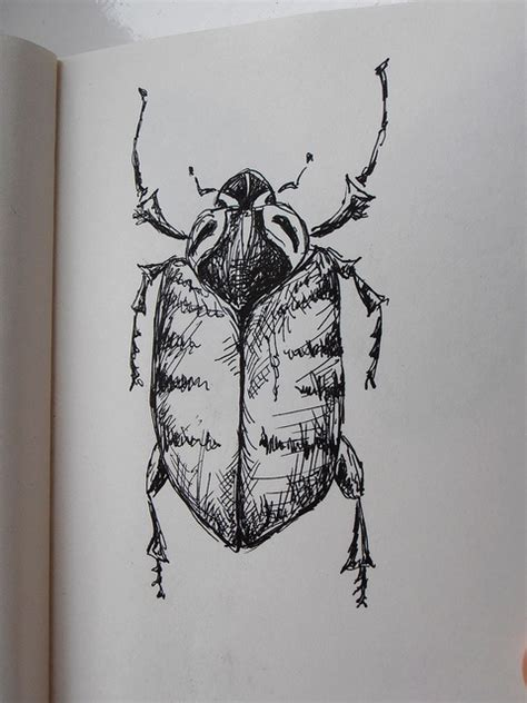 sketch ideas  pinterest sketching