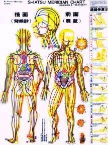 Shiatsu Meridian Charts