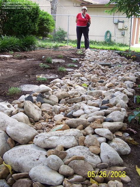 how to build a creek bed building creek bed images