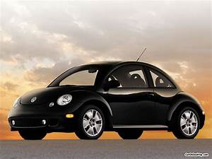 Fantastic Cars: VW Beetle nice automobile production