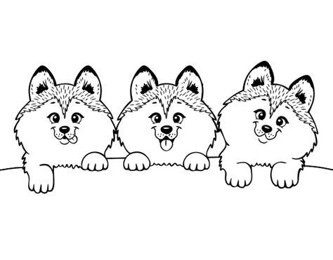 disegni da colorare gattini e cagnolini disegni da colorare gattini e cagnolini
