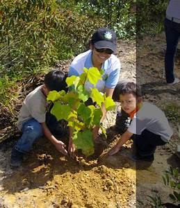 Reforestation Program With Eco Cameron