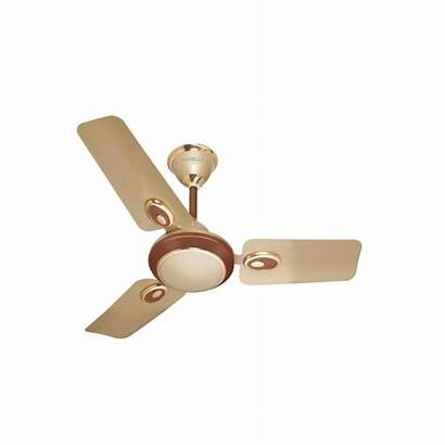 Ceiling Fan Havells Mm Fusion Brown Fans