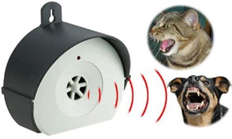 repulsif chat exterieur ultrason repulsif chat comparaison de r 233 pulsif chat