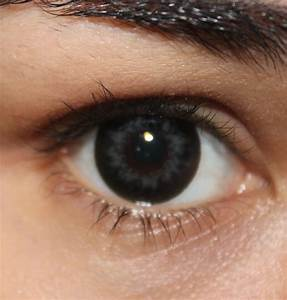 The gallery for --> Dark Grey Contact Lenses