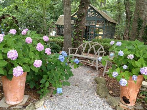 design  woodland garden shade garden ideas hgtv