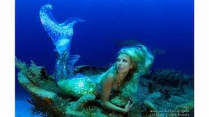 Hannah Fraser, a real life mermaid, swims with sharks and ...