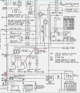 2005 Nissan X Trail Wiring Diagram  U2013 Dogboi Info