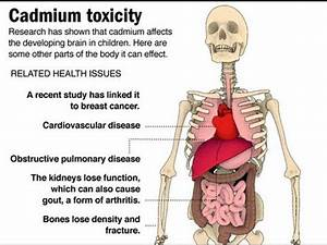 Cancer and Cadmium - YouTube
