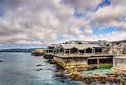 Aquatic Adventures: Monterey Bay Aquarium | Drive The Nation