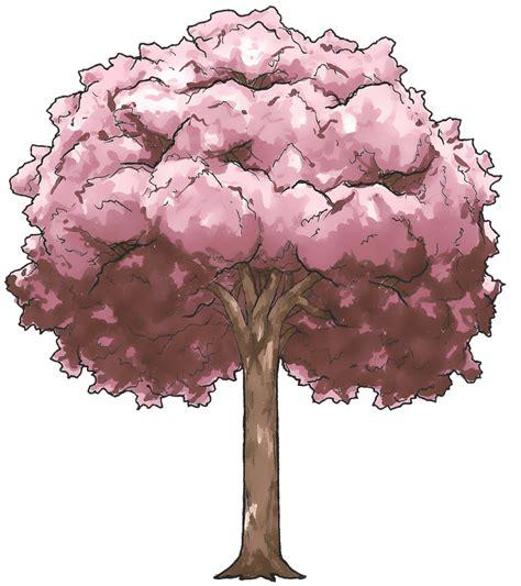 Drawn Cherry Blossom Chibi Pencil And In Color Drawn