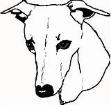 Whippet Clipart Drawing Clip Greyhound Line Awesome Digital Weclipart Carving Pumpkin sketch template