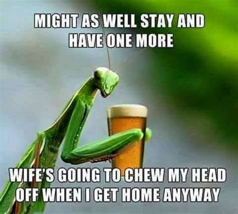 Beer Shits Meme - stay and have one more beer meme
