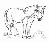 Horse Coloring Walk Horses Pages sketch template