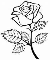 Roses Coloring Pages Printable sketch template