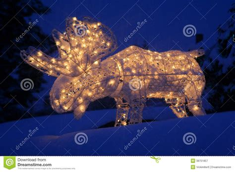 lighted outdoor christmas moose lighted moose at stock image image of yard 38751857