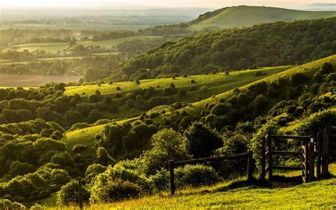 Nature, Landscape, Trees, Forest, England, Uk, Hill, West