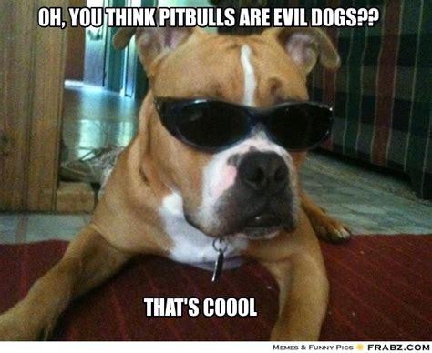 Pitbull Puppy Meme - oh you think pitbulls are evil dogs meme generator captionator