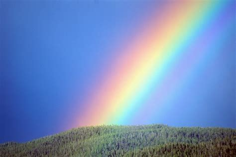 how many colors in a rainbow how many different colors are there in a rainbow