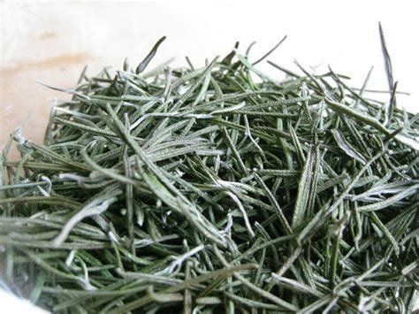 rosemary substitute substitute dried rosemary for fresh how to dry rosemary delishably
