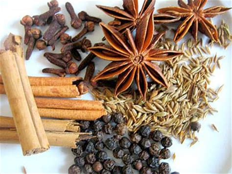 five spice chinese five spice powder for cooking