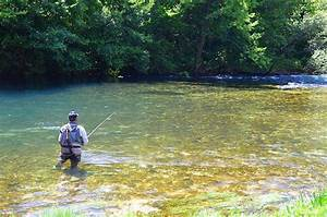 How To Start Fly Fishing  U2013 The Ultimate Guide