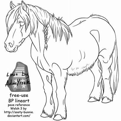 Welsh Lineart Horse Drawing Head Deviantart Horses