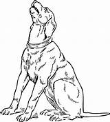Coloring Hound Basset Pages sketch template