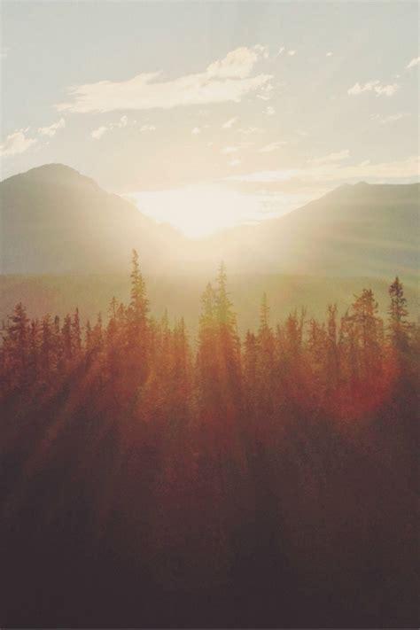 bright autumn sun pictures   images