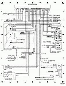 Unique Auto Wiring Diagram