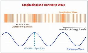 Transverse And Longitudinal Waves  Examples  Solutions  Videos  Notes