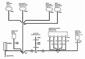 1996 Bronco  I Need Wiring Diagram  Fuel Pump  Circuit  Ground