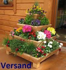 Hochbeet Blumen Bepflanzen : blumen im hochbeet anpflanzen wachstum anlegen s en ernten ~ Watch28wear.com Haus und Dekorationen