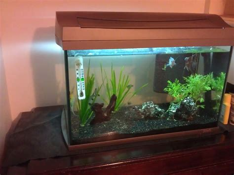 tetra fish tank full set   good condition frome
