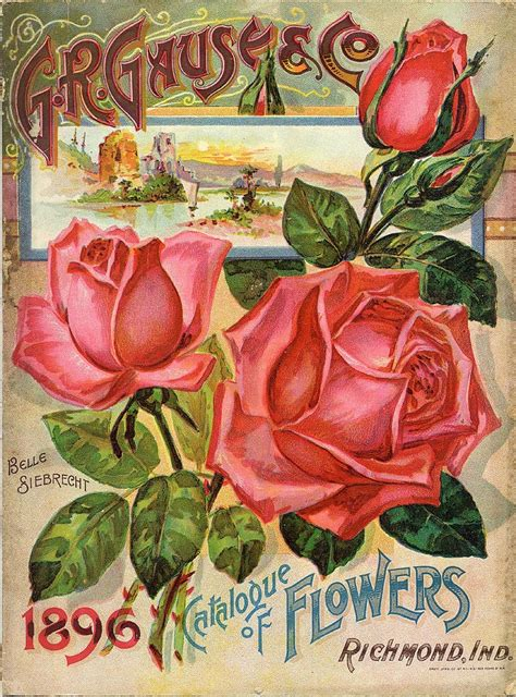 plant catalogs 1000 ideas about plant catalogs on pinterest mail order plants flower seeds and tropical plants