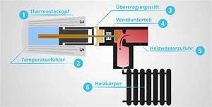 Wie Funktioniert Ein Heizkörper : heizk rperthermostat grundlagen und heizungsthermostat wechseln ~ A.2002-acura-tl-radio.info Haus und Dekorationen