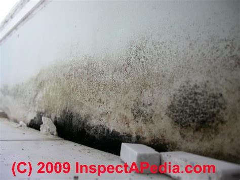 mold on shower walls bathroom mold water damage when how to look